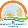 GTHB da 2011 – 2014 Yılı Tekniker Alım İncelemesi. 2015 Yılı Tahminleri.