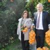 Vatandaşa 500 ton portakal dağıtıldı.