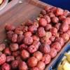 Hünnap meyvesi Bilecik'teki tezgahlarda da yerini aldı