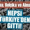 Türkiye'den 16 ülkeye hamsi ihraç edildi