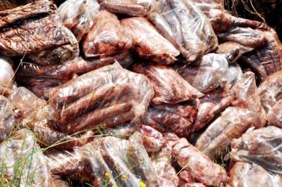 Başkent'te Ele Geçirilen Bozuk Gıdalar İmha Edildi.