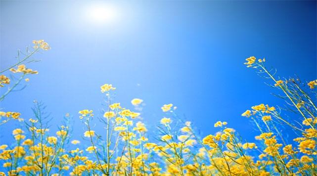 Bahar ayları refülüyü tetikliyor.
