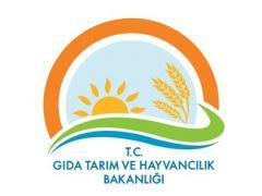 Gıda Tarım ve Hayvancılık Bakanlığına uzman yardımcısı Alımı Hazırlığı