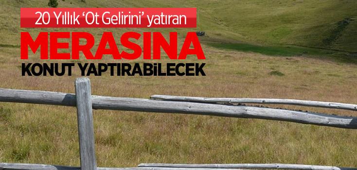 Türkiye'de Hayvancılığa Büyük Darbe Vuracak Karar