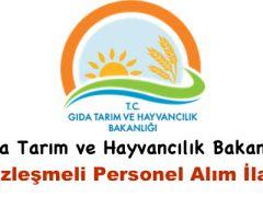 Gıda Tarım ve Hayvancılık Bakanlığı Sözleşmeli Personel Alımı