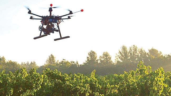 Drone'lar artık suya dalıp, ağaç dikecek