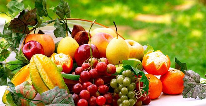 Muş'ta meyvecilik geliştirilecek
