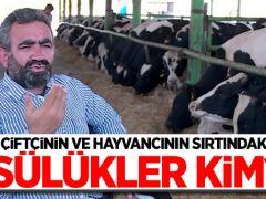 Çiftçinin ve hayvancının sırtındaki sülükler kim?