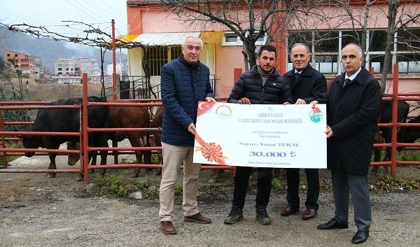 Vali Karahan, Genç Çiftçilere 594 Damızlık Düve Dağıttı