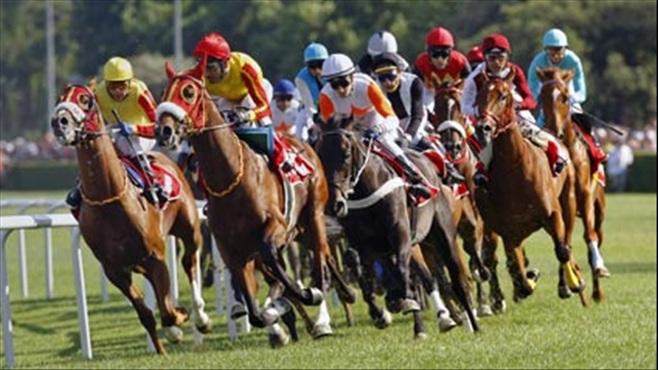 At yarışları düzenleme Bakanlıktan Alındı