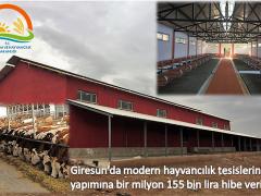 Modern hayvancılık tesislerinin yapımına hibe verilecek