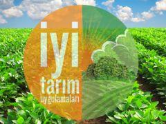 Giresun'da Fındık Üretiminde İyi Tarım Uygulamaları Yaygınlaşıyor