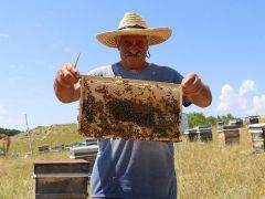 'Kafkas Balı'nın kalitesinin sırrı arının dilinde