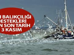Kıyı balıkçılığı destekleri için son tarih 3 Kasım