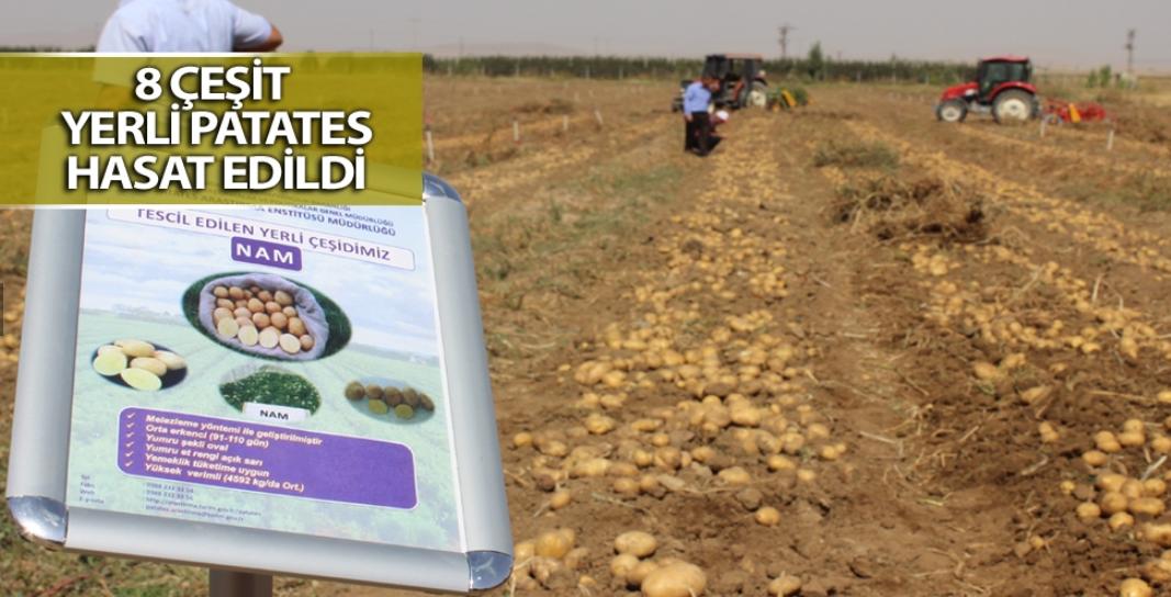 'Tarımsal teknoloji ve tohumu üretip satacağız'
