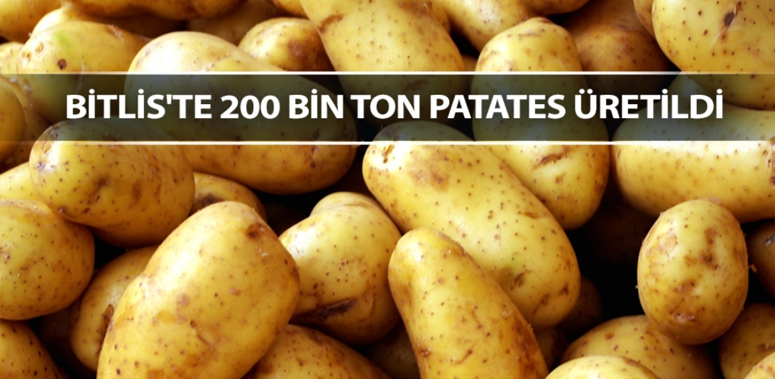 Bitlis'te 200 bin ton patates üretildi