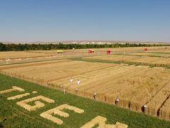 TİGEM'in yeni genel müdürü tarımsal faaliyetleri yaygınlaştıracak