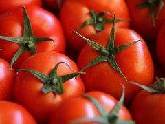 Rusya, Türkiye'den domates ithalat iznini genişletmeye hazır