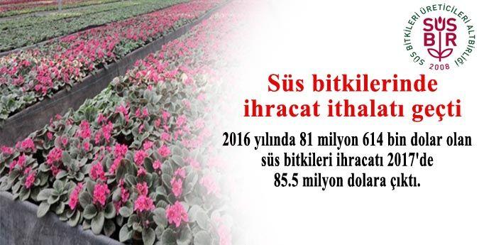 Süs bitkilerinde ihracat ithalatı geçti