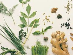 Tıbbi ve Aromatik Bitkiler Ekonomisi