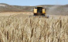 FAO Gıda Fiyat Endeksi Mayıs'ta yükseldi