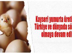 İhraç edilen her üç yumurtadan biri Kayseri'den