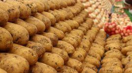 Patates ve soğan fiyatları normale döndü