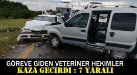 Göreve giden veteriner hekimler kaza geçirdi: 7 yaralı