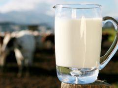 Süte müdahale üreticiyi sevindirdi