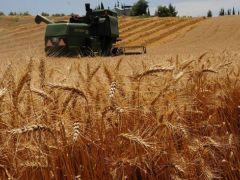 Tarım ÜFE eylül verileri