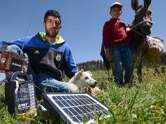 Güneş panelli çobanlar