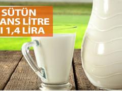 Üretici çiğ süt fiyatındaki artıştan memnun