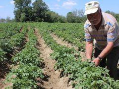 Çiftçiye 30 Haziran uyarısı