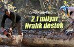 Ormanların geliştirilmesi için 459 milyon liralık destek