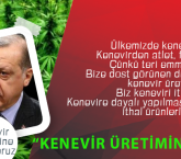 Türkiye kenevir üretimine başlıyor