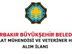 Diyarbakır Büyükşehir Belediyesi Personel Alacak