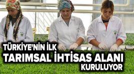 Türkiye'nin ilk Tarımsal İhtisas Alanı nerede kurulacak?