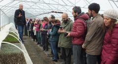Türkiye tıbbı ve aromatik bitkilerde dışa bağımlılıktan kurtulacak