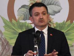 Bakan Pakdemirli: Fındığın Türkiye'ye katkısını, 3 milyar dolar olarak belirledik