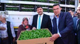 Kahramankazan Belediyesi'nden çiftçilere fide desteği