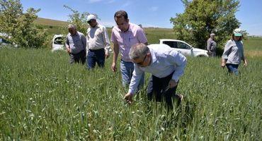 Kayseri'de İl ve ilçe Tarım personelinin izinleri iptal edildi