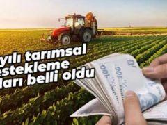 Çiftçinin merakla beklediği Tarımsal Destekleme Kararı yayımlandı
