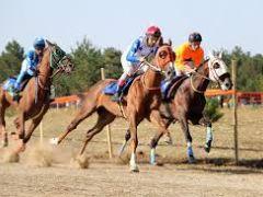 """Kovid-19 tedbirleri kapsamında """"at yarışları"""" da ertelendi"""